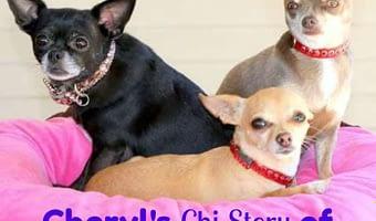 Cheryl's Chi Story of Her 3 Girls
