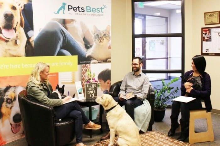 Pets Best dog friendly office