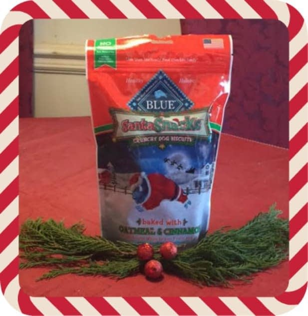 Blue Santa Snacks