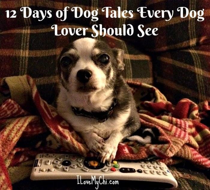 12 dog movies everyone should see